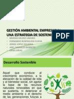 Gestion Ambiental Una Estrategia de Sostenibilidad