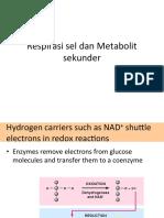 Respirasi Dan Metabolit Sekunder