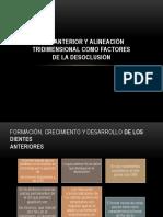 262519376-Guia-Anterior-y-Alineacion-TRIDIMENSIONAL.pptx