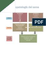 Farmacologia y asma xd