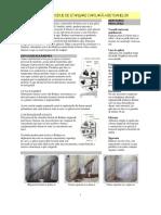 Prezentare Radmyx.pdf
