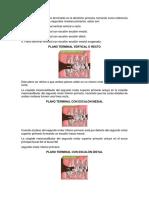 Existen 4 Tipos de Planos Terminales en La Dentición Primaria