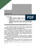 Capitol XI Echilibrul Financiar