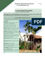 Areca-catechu-betel-nut.pdf