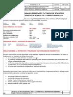 Informe Tecnico Generador Kohler Plapasa