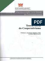 Teoria Geral Do Cooperativismo