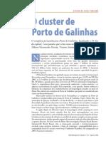 58782062-O-Cluster-de-Porto-de-Galinhas.pdf