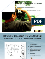 DHF Patogenesis