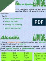 Gliceride - Curs 9