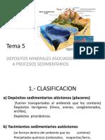 Tema 5 Yaciminetos de Origen Sedimentario