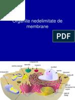 6. Organite Nedelimitate de Membrane