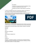 Características Del Medio Ambiente