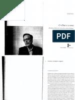 XAVIER, Ismail Cinema, revelação e engano.pdf