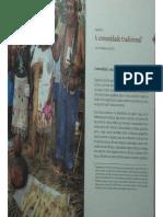BRANDÃO_ a Comunidade Tradicional