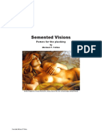 Semented Visions & Roamin Umpire Poems by Michael P Totten