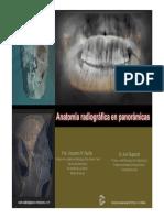 Fronteras Anatomicas Radiografia Panoramica