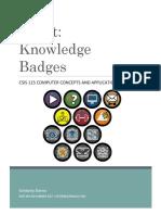quest badges