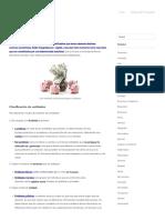 Tipos de entidades.pdf