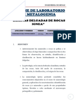 Informe de Laboratorio de Metalogenia