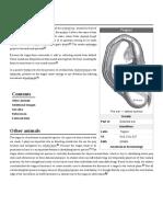 Tragus_(ear).pdf