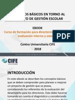 eBook Conceptos Basicos Proyecto de Gestion 1.5