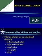 12. Mecanisme_labor in Occiput Presentation (Prof.dr.Hidayat Wijayanegara,Dr.,SpOG)