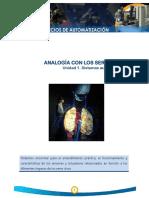 AnalogiaConLosSeresVivos.pdf
