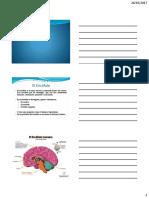 Fisioterapia Patologia neurologica