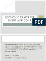 Economic Traits for Sheep and Goat