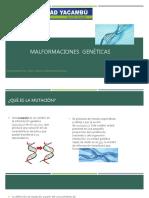 mutaciones-160313233637
