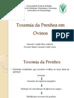 Indicativos Bioquímicos e Hormonais de Casos Naturais de Toxemia Da Prenhes Em Ovelhas
