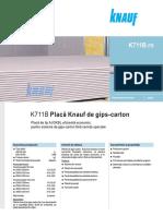FisaProdus.pdf