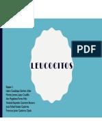 Equipo 5 Leucocitos