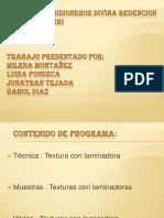exposicintexturaconlaminadorapm-100914100503-phpapp02JOP