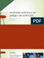 Animales extintos y en peligro de extinción.pptx
