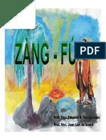 ZANG-FU.pdf