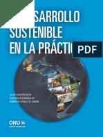 Desarrollo Sustentable en la Practica