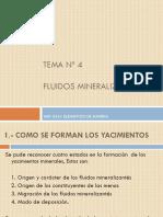 Tema Nº 5 presentacion nueva.pptx