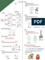 NOTA TAHUN 6 - Unit 1.pdf