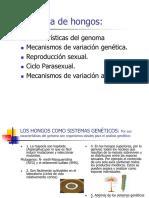 GENÉTICA DE LOS HONGOS (1)