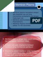 pengertian_membran_plasma.pdf