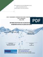 Informe Calidad de Agua Paso Hondo (19092017) Actualizado 5