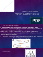 Dna Profiling and Protein Electrophoresis