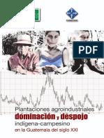 Plantaciones y Despojo en Guatemala-sXXI