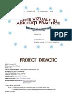 AVAP_proiect