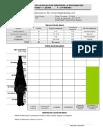 307393679 Protocolo e Informe Brunet Lezine