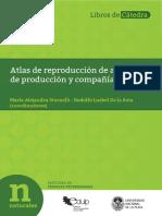 Stornelli2.PDF PDFA