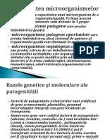 CURS 10 Patogenitatea Micro
