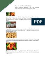 Verduras Que Cosecha en Huehuetenango