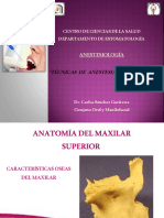Técnicas Anestésicas Del Maxilar Superior - Parte 1